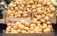 Small Potatoes, Time, and Inbound Marketing
